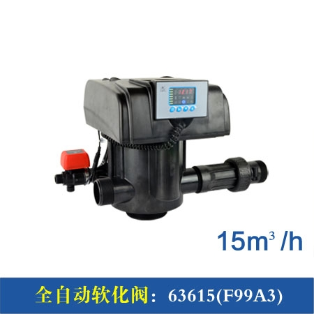 F99A1/3 15m³/h全自动软化阀