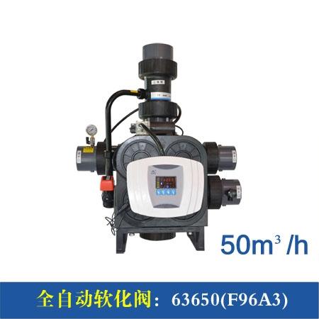 F96A1/3 50m³/h全自动软化阀